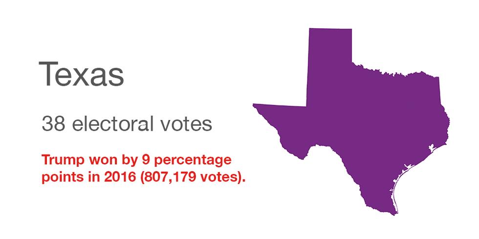 Texas vote data