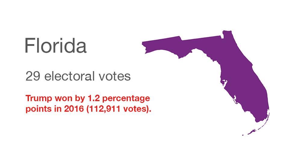Florida vote data